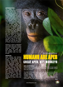 Apes, Monkeys & Humans